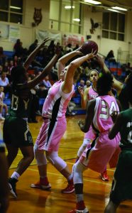 Eye on the basket. Sophomore Julianna Fowler shoots to make a basket. photo/ Albany Alexander