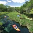 Florida is known for having some of the best places for beautiful and enchanting waterways that are very mobile by kayaks, canoes, and paddle boards, it's such a fun and […]